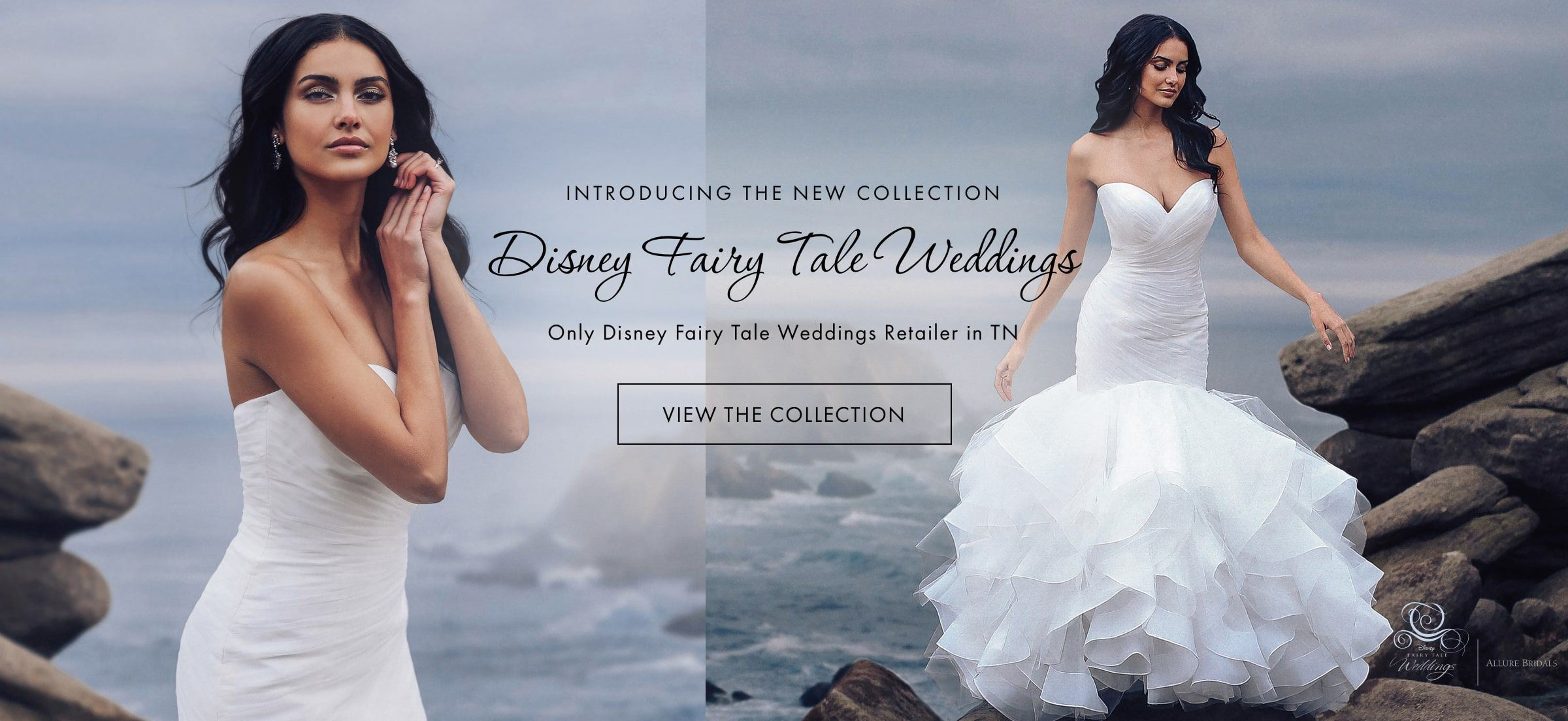 Woman wearing Disney Wedding Dress at Beach Wedding Desktop